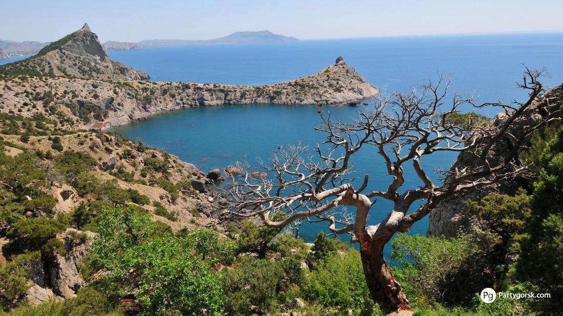 все для отдыха и туризма севастополь