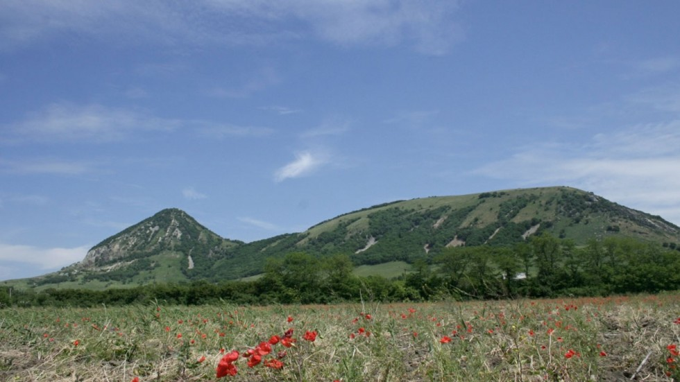 Гора Верблюдка
